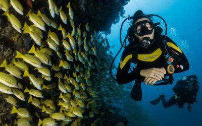 L'hypnose et plongée sous-marine: plonger en toute sérénité